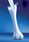 calcio-y-huesos