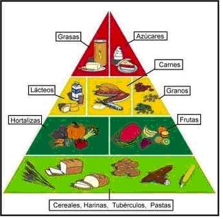 Los nutrientes están compuestos por los siguientes grupos :