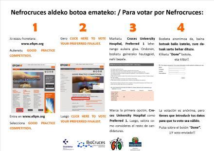 EFQM instrucciones para votar